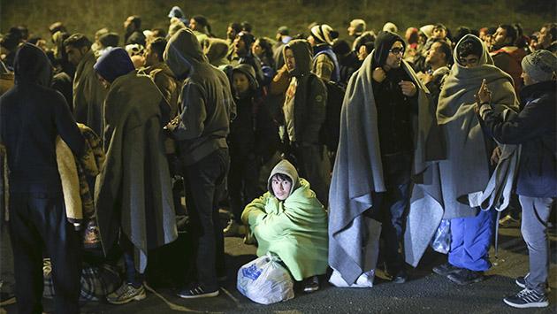 Los refugiados que vienen de la guerra