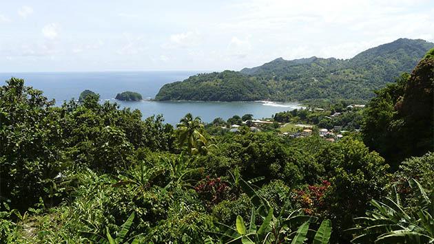 Seis destinos del Caribe. (III) Dominica: la isla vertical