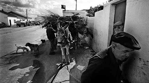 Epidemia de suicidios en Portugal