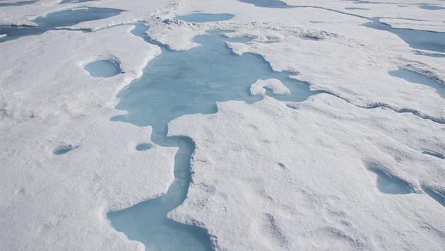 Hacia el fin del Ártico